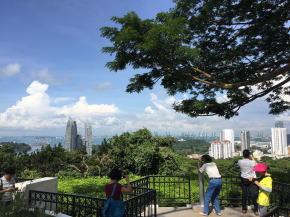 シンガポール市街を一望