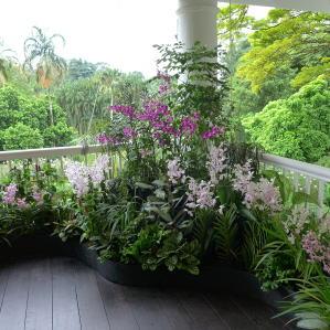 シンガポール植物園視察