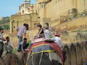 アンベール城の象タクシー