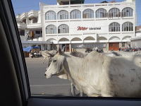 インドの車窓