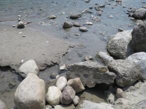 川底が見えるガンジス河