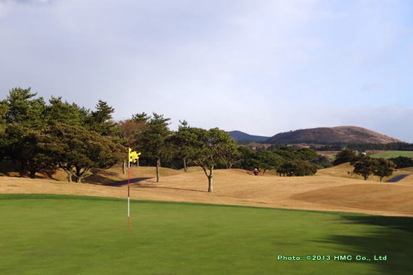 キャスレックス ゴルフクラブ