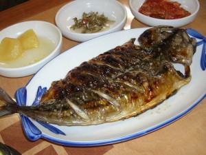 済州島の鯖