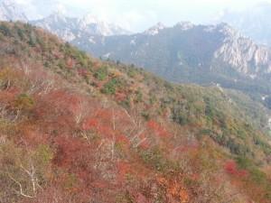 韓国ソラクサン紅葉