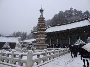 平昌観光 月精寺
