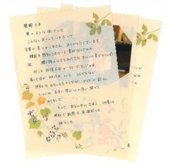 韓国旅行体験記 お手紙