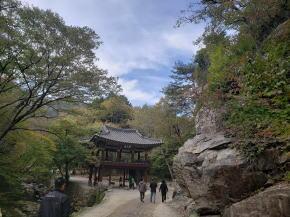 仙厳寺最初の門