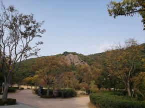 墓地の隣は公園が整備