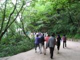 石窟庵に向かう林道