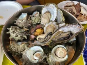 対馬の牡蠣とサザエ