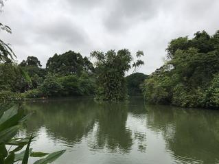 世界遺産シンガポール植物園