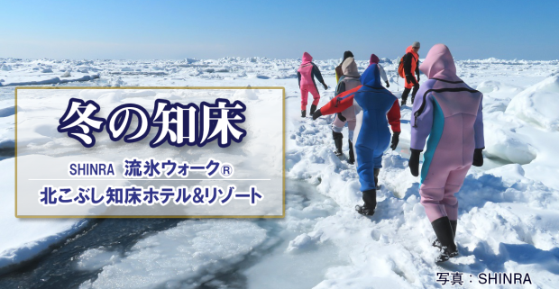 冬の知床観光