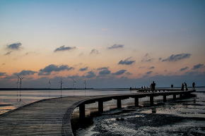 高美湿地桟橋